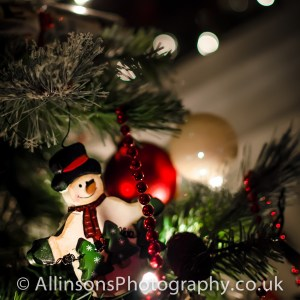 Merry Christmas and a happy New Year from Allinsons Photography