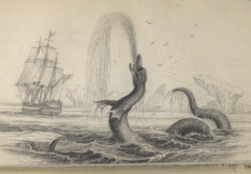 old fashioned engraving of a sea serpent reared up and blowing water out its mouth like a fountain