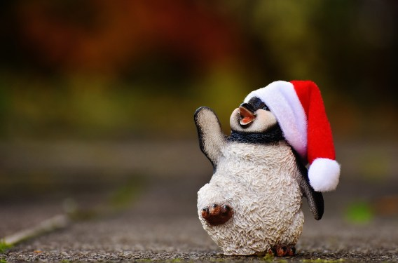 penguin-1843547_1280