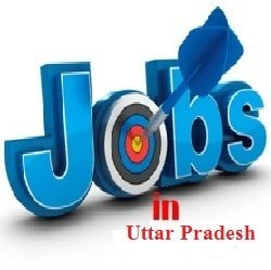 Government And Private Jobs in Prayagraj And Uttar Pradesh