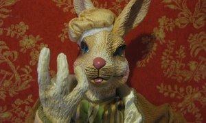 wtf bunny