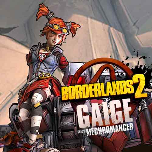 Image result for borderlands 2 mechromancer