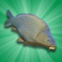 Carp Fishing Simulator Mod 1.9.8.3 Apk [Unlimited Money]
