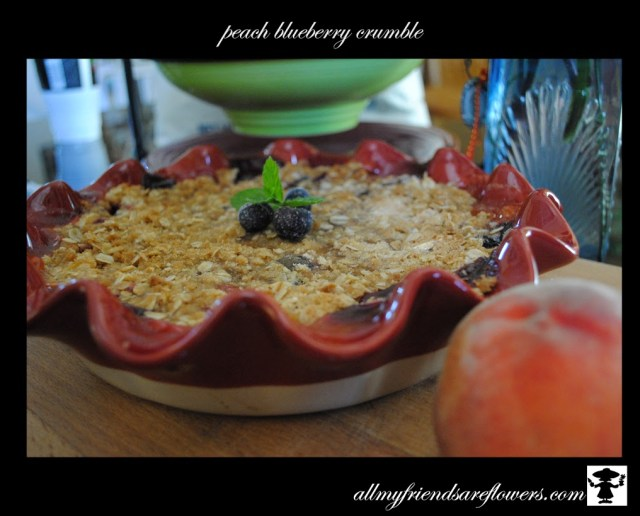 peach blueberry cobbler crisp crumble allmyfriendsareflowers.com