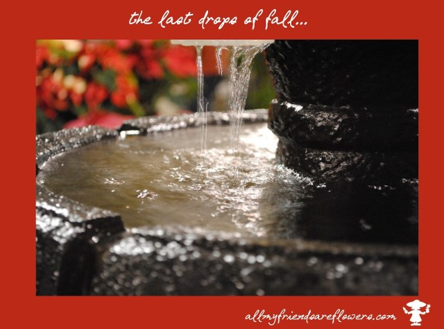 fountains, fall, water fountains, allmyfriendsareflowers.com