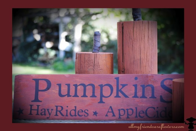fall crafts, wooden pumpkins, vinyl lettering