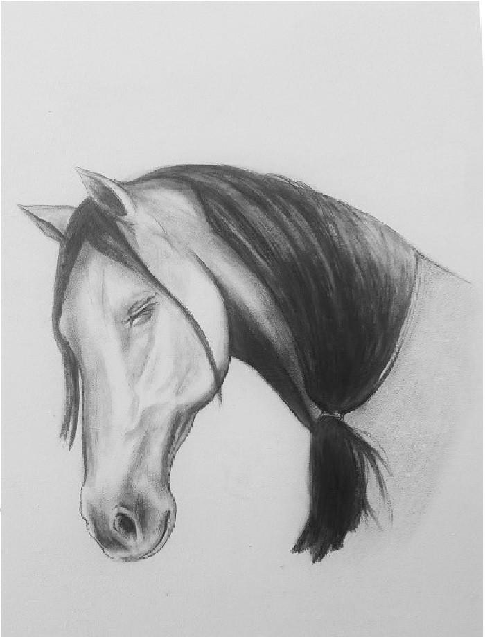 1 ponytail