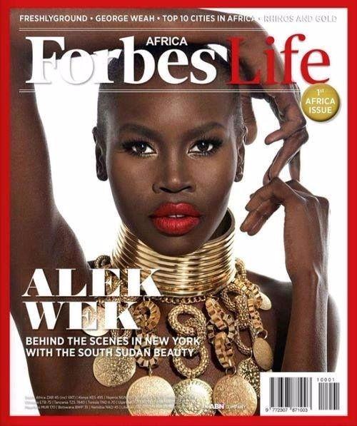 model millionaires alek wek