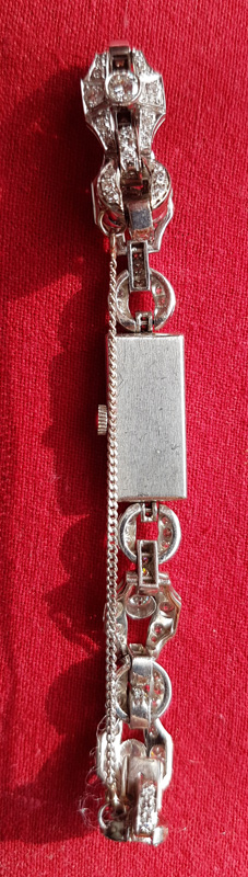 back of the watch and strap
