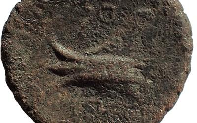 Phoenicia, Arados 206/1 BC AE3 w/ Zeus