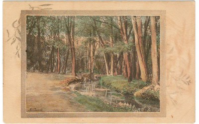 Williams Siding, B.C. RFE-1 1913 1c Art Postcard
