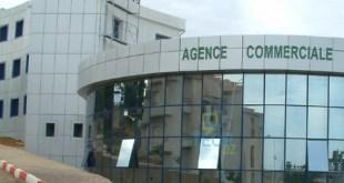 Algerie_Telecom_Actel