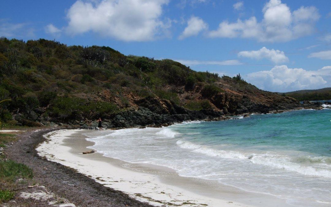 5 Things to do in Puerto Rico with kids