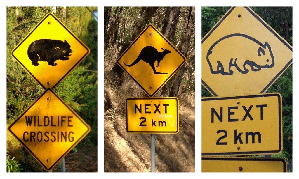 Wildlife Street Signs in Australia