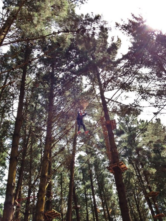 Magno on a high wire at Adrenalin Forest, Christchurch, NZ