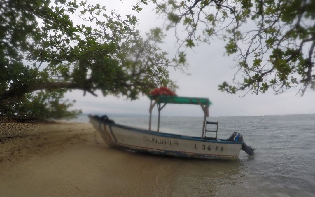 Adventures on the Caribbean Coast – Part I