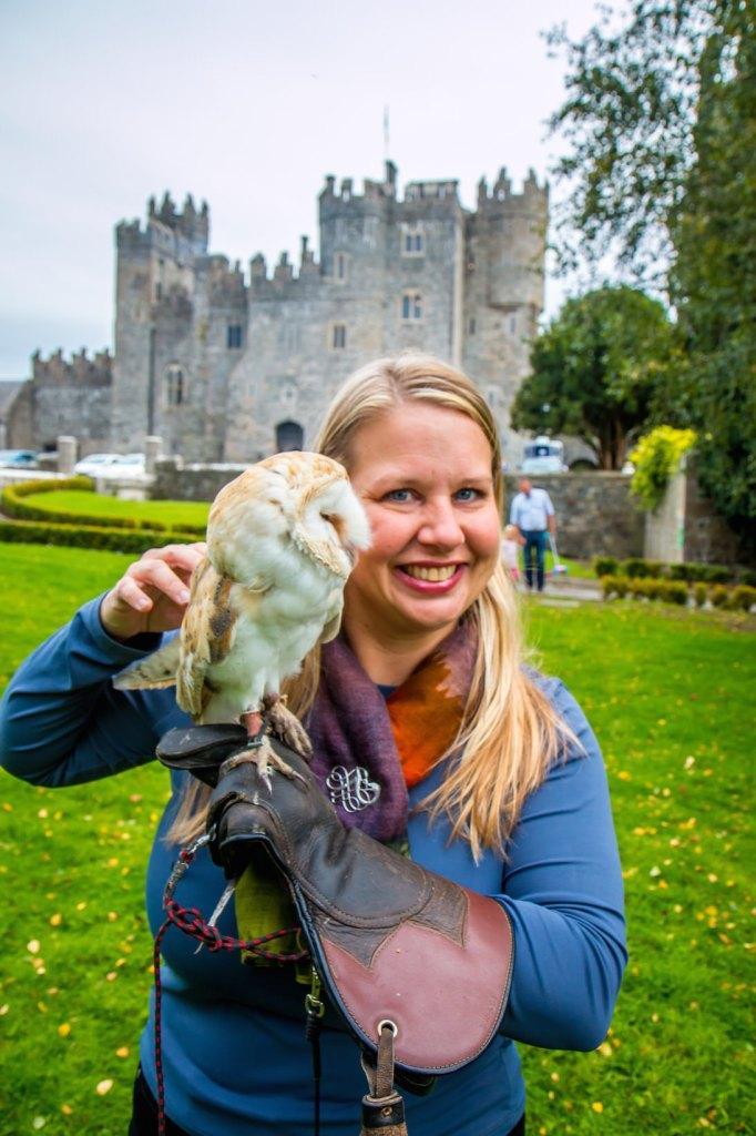 Owl experience at Kilkea Castle Hotel