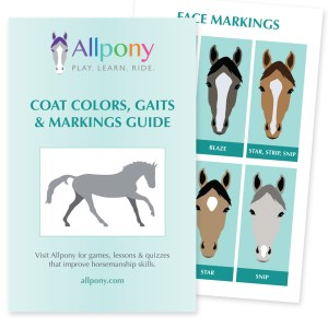 Allpony Horse & Pony Identification Booklet