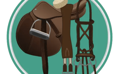 Tack Cleaning Quiz