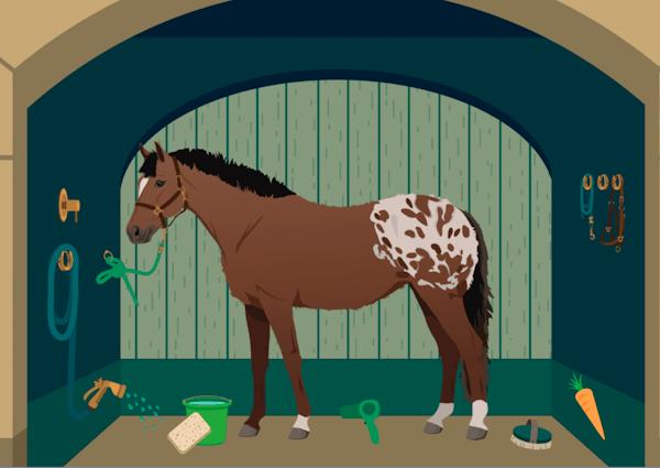 Bath horse game