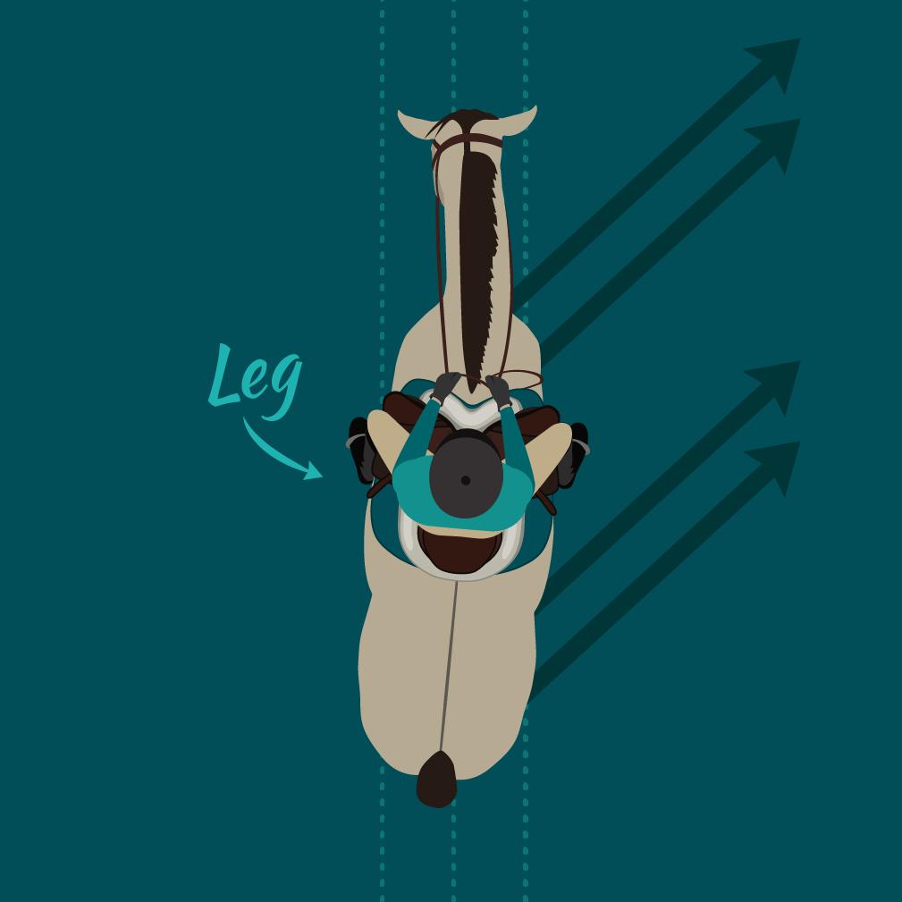 Leg Yield illustration