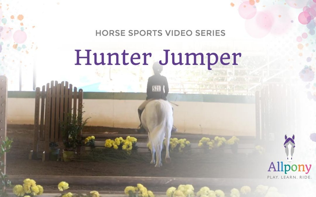 Allpony Horse Sports Video Series: Hunters