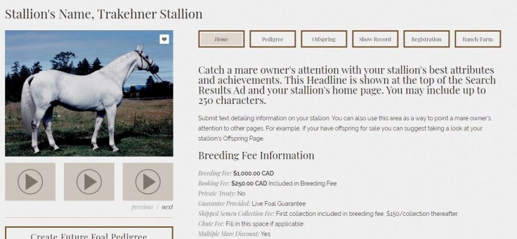 Supreme Stallion Listing Headline Location