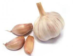 garlic-benifits