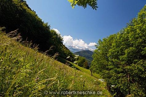 Alpen 03