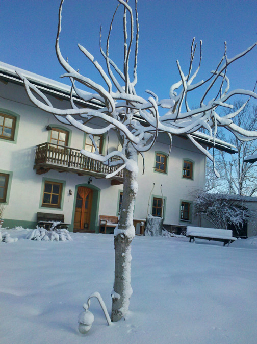 Winterskulptur mitten im Hof