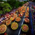 Feria de las Flores: Medellin Festival of Flowers Event Guide