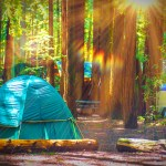 Camping California: Best Locations and Pro Tips
