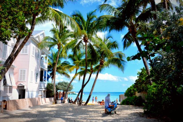 Dog Beach, Key West