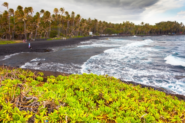 Hawaii Punalu'u Beach