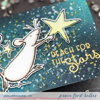 Catch a Falling Star Celebration Release - Colorado Craft Company  (GIVEAWAYS!)