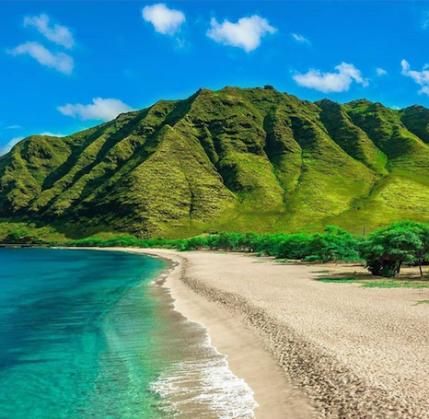 top hawaii beaches