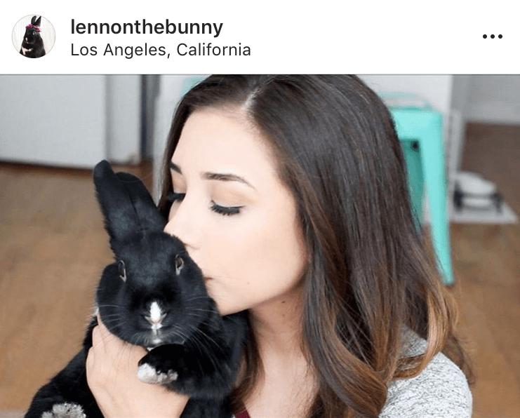 bunny mum bunny mama bunny mummy allthestufficareabout lennonthebunny 2