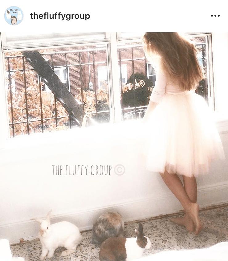 bunny mum bunny mama bunny mummy allthestufficareabout sumbapumba fluffygroup