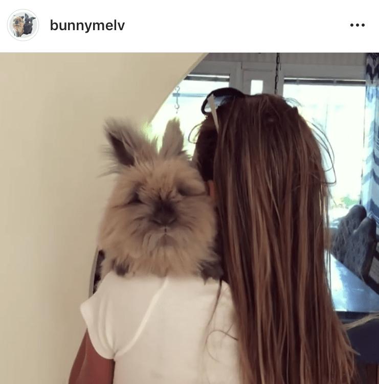 bunnymelv bunny mum bunny mama bunny mummy allthestufficareabout bianka