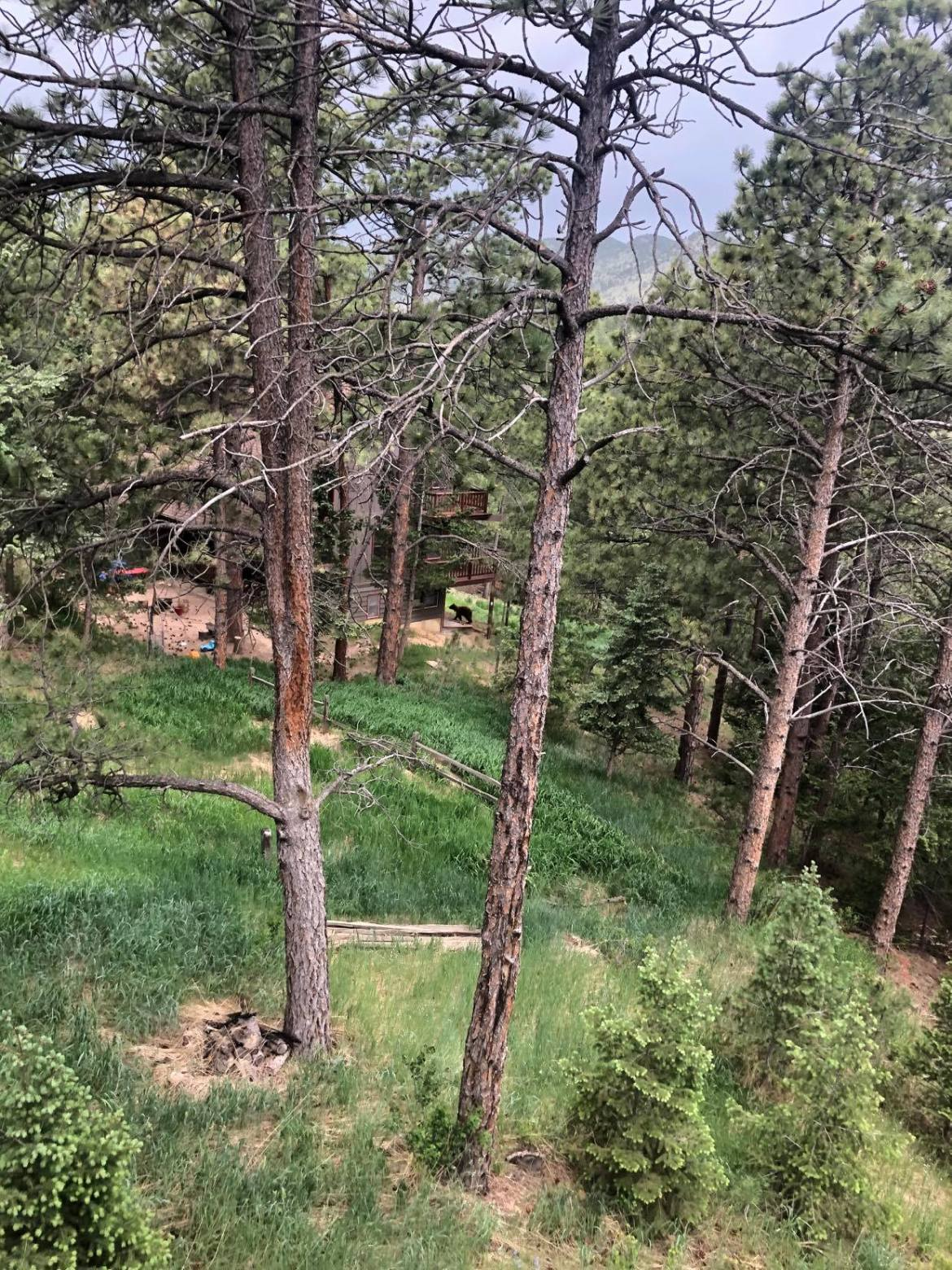 Living in Boulder Mountains