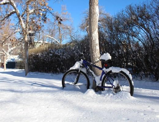Boulder in Winter