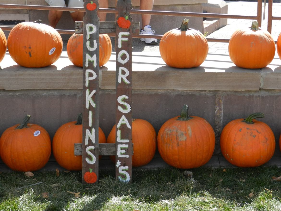 fall festivals in the boulder area