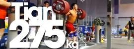 tin-tao-275-squat