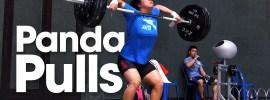 Zhang Wangli Fast Pulls Panda Pulls