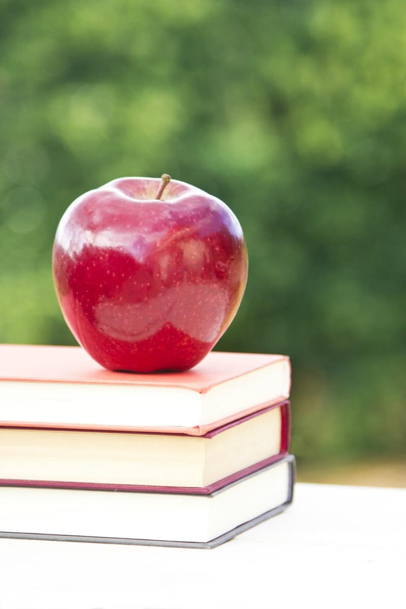 10 DIY Teacher Appreciation Gift Ideas All Things Mamma