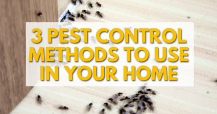 3 pest control methods to use in your home