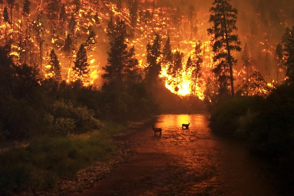 deadliest wildfires in history