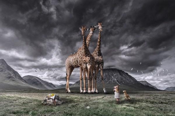 tallest animals