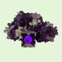 Wedding LED Light Box