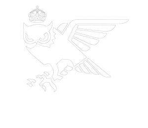 Nocturnal Events Logo